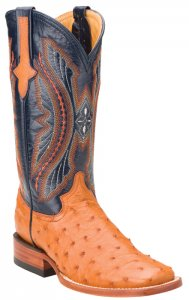 877b45e6b9e Ferrini Ladies 80193-02 Cognac   Navy Green Genuine Ostrich Boots
