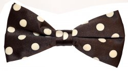 Classico Italiano Brown With Cream Polka Dots 100% Silk Bow Tie / Hanky Set BH0006