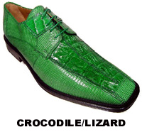 Crocodile/Lizard