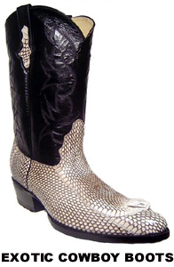 Exotic Skin Cowboy Boots