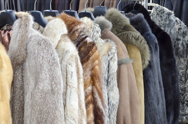 Stay Cozy with Winter Fur